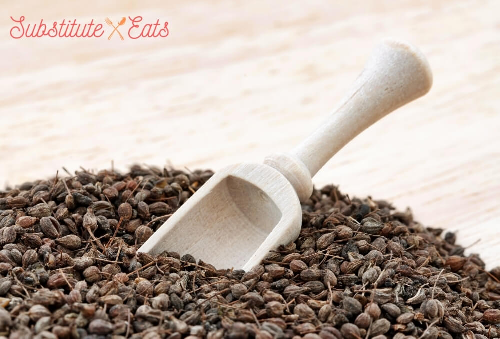 pernod substitutes - Anise Seeds and Powder